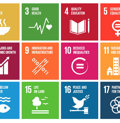 Sustainable Development Goals: The Journey so far